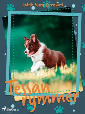 cover image of Tessan rymmer