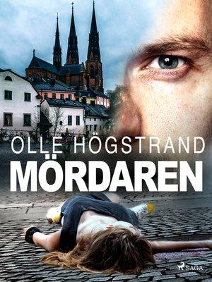 cover image of Mördaren