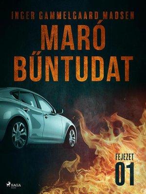 cover image of Maró bűntudat – 1. fejezet
