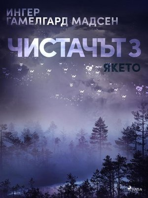 cover image of Чистачът 3