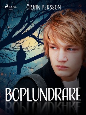 cover image of Boplundrare