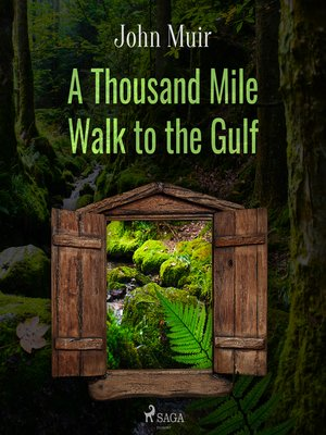 cover image of A Thousand Mile Walk to the Gulf