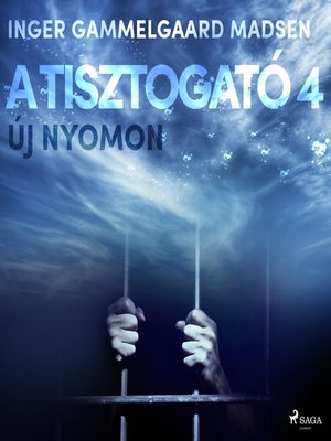 cover image of A Tisztogató 4.