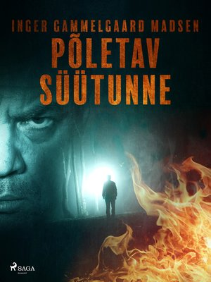 cover image of Põletav süütunne