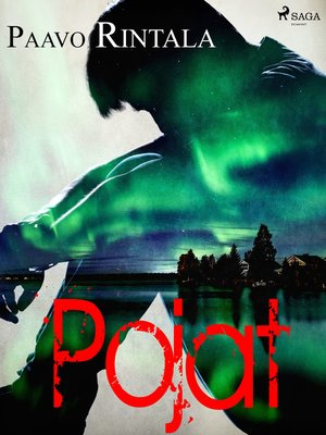 cover image of Pojat