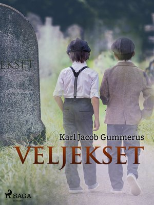 cover image of Veljekset