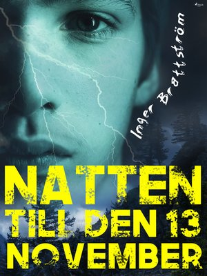 cover image of Natten till den 13 november