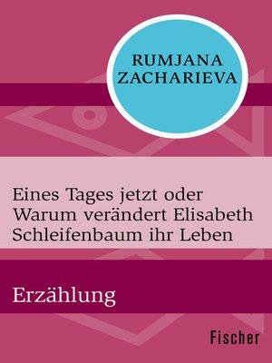 cover image of Eines Tages jetzt oder Warum verändert Elisabeth Schleifenbaum ihr Leben
