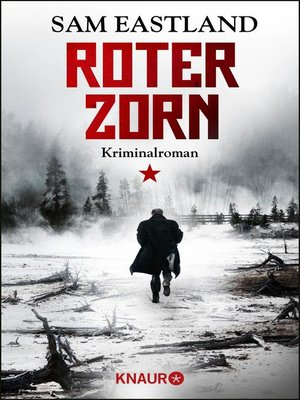 cover image of Roter Zorn