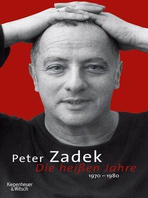 cover image of Die heißen Jahre