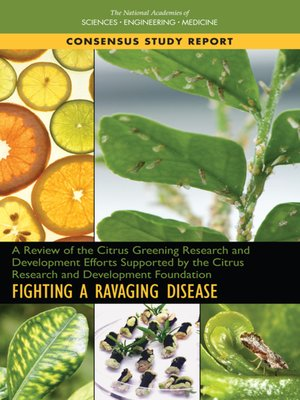 cover image of A Review of the Citrus Greening Research and Development Efforts Supported by the Citrus Research and Development Foundation