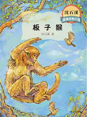 cover image of 沈石溪激情动物小说 板子猴