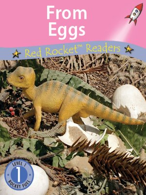 cover image of From Eggs